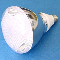 Compact Energy Saving Lamps
