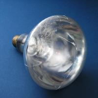 Teflon Bulbs (Food Industry)